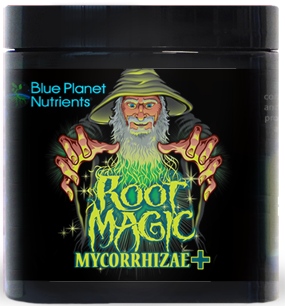 Root-Magic +